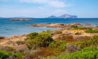 Photo d'une plage de Figari