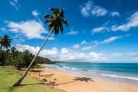 Photo d'une plage aux Caraïbes